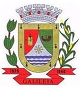 mg-galileia-brasao